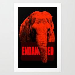 Endangered Asian Elephant Art Print