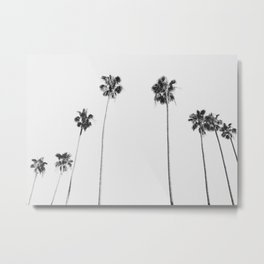 Black & White Palms Metal Print