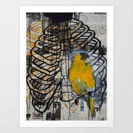 gold finch Art Print