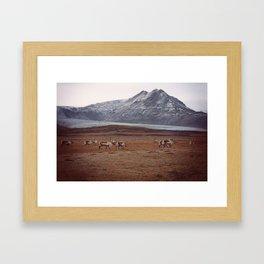Roaming Framed Art Print