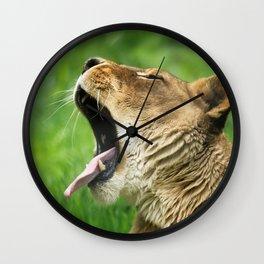 Yawning Lion Wall Clock