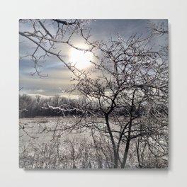 Icy-lation Metal Print
