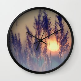 Winter sun in the reed Wall Clock