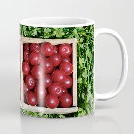 Prunus cerasus sour cherry fruit Coffee Mug