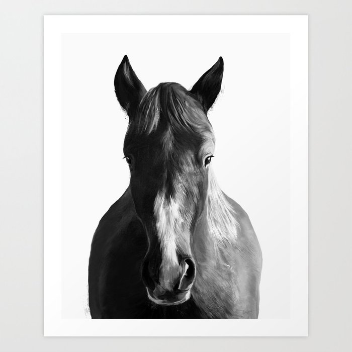 Discover the motif HORSE by Amy Hamilton as a print at TOPPOSTER