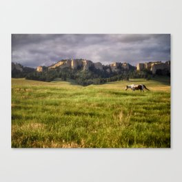 Horse in the Hills Canvas Print