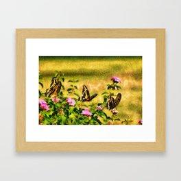 Three Giant Swallowtails - Monet Style Framed Art Print