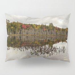 a pond Pillow Sham