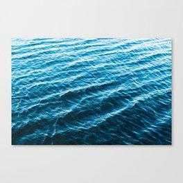 Wanderful Waves Canvas Print