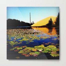 Collard Lake  Metal Print