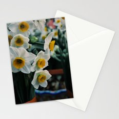 Daffodils Stationery Cards