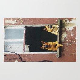 dog's voyeur Rug