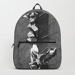 Neglect DPGPA151027a-14 Backpack