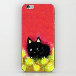 Black kitten iPhone Skin