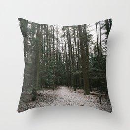 Windy Walk Throw Pillow