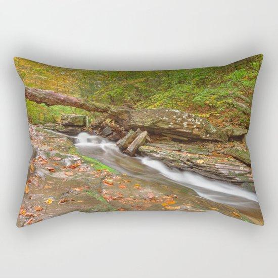 Ricketts Glen Autumn Stream Rectangular Pillow