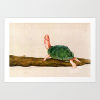penis Art Prints featuring The Rare Penis-Head Turtle by C.M. Duffy
