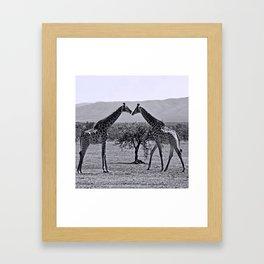 Giraffe talk Framed Art Print