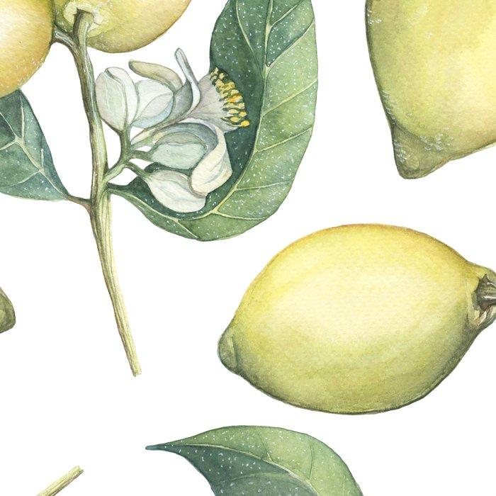 Lemon Fresh Leggings