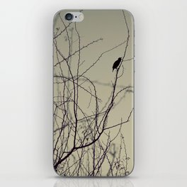 chirping bird iPhone Skin