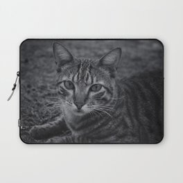 Cat Laptop Sleeve