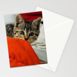 Mora Stationery Cards