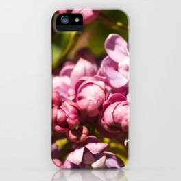 Branch of fresh purple lilac flowers in a city public park close-up iPhone Case