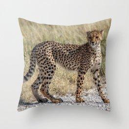 Cheetah Cub 4 Throw Pillow