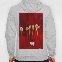 A look into the Real Heart of the Rose Hoody