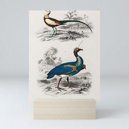Vintage Print - Universal Dictionary of Natural History (1849) - Janaca; Horned Screamer Mini Art Print