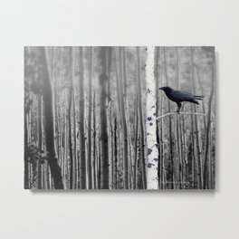 Black Bird Crow Tree Birch Forrest Black White Country Art A135 Metal Print