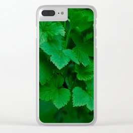 blackcurrant leaves texture Clear iPhone Case