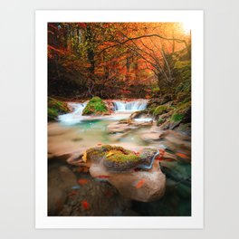 lago en el rio urederra, river and lake in the forest Art Print