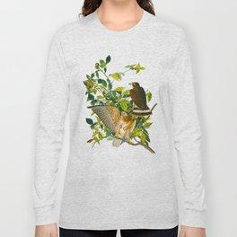 Broad Winged Hawk Long Sleeve T-shirt