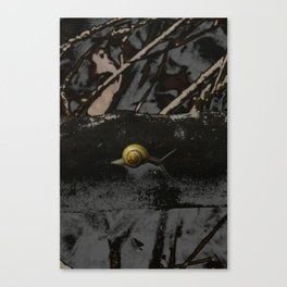 Little Creatures YELLOW SNAIL Canvas Print