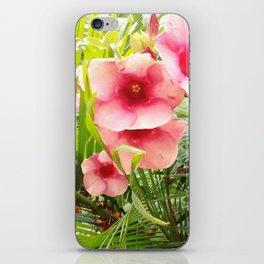 Pink Beauty II iPhone Skin