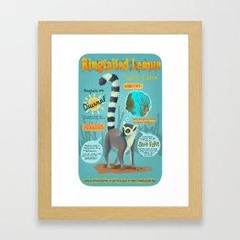 Ringtailed Lemur Framed Art Print