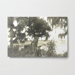 Marsh Landscape Metal Print