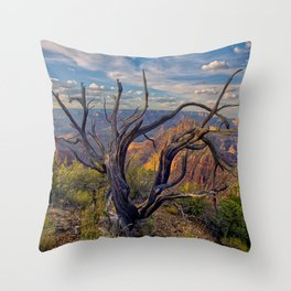 Grand Canyon view from the east slope of Buggeln Hill Throw Pillow