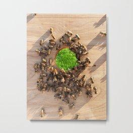 Bees Eye Metal Print