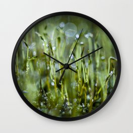 dewy morning Wall Clock
