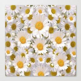 WHITE SHASTA DAISES GARDEN Canvas Print