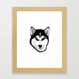 Husky different eyes Framed Art Print