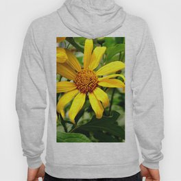 yellow daisys Hoody