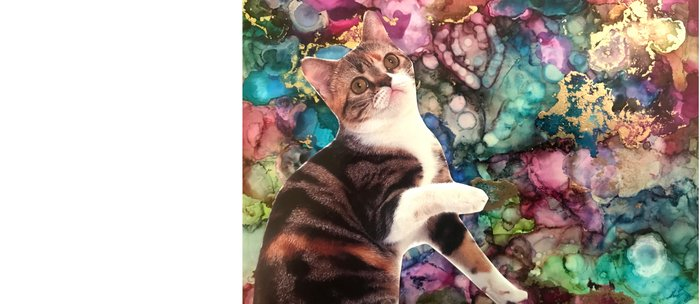 Cute Cat on a Marbled Background Coffee Mug