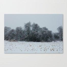 2013 Ice Storm 3 Canvas Print
