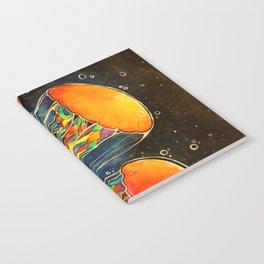 Rainbow Jellies Notebook