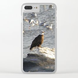 Eagle on Ice Clear iPhone Case