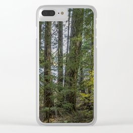 The Woods Around Clear Lake Clear iPhone Case