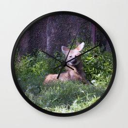 Philadelphia Zoo Series 15 Wall Clock